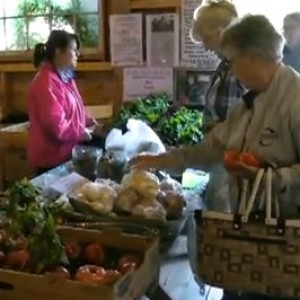 Shop the Farmers Markets in the Municipality of Chester